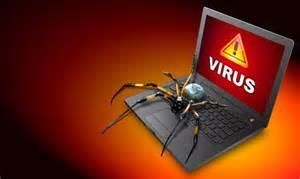 Computer virus spider